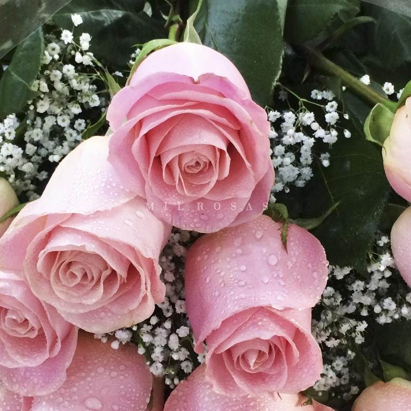 Ramos De Rosas De Color Rosa Claro Mil Rosas