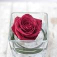 Centro de cristal con rosa Beso de Agua