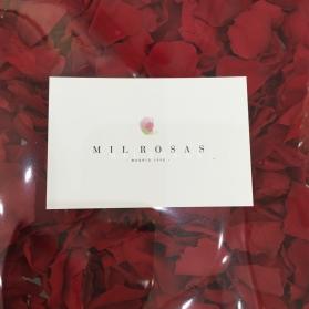 Paquete de Pétalos Rojos Preservados