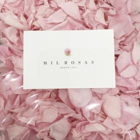 Paquete de Pétalos Rosas Preservados