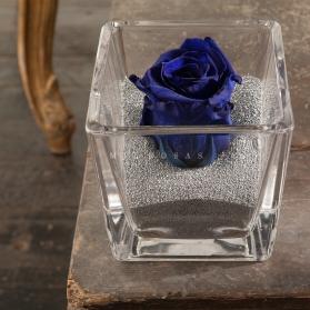 Perla Azul Intenso