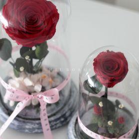 Rosa Joya Red (Bella y Bestia)