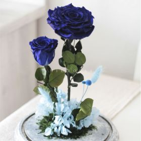 Rosa Eterna Azul (Bella y Bestia)