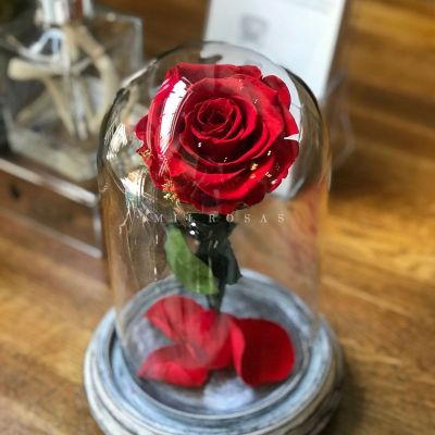 Rosa Joya